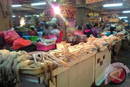 Harga Daging Ayam Di Bali Kembali Melonjak