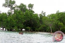 Pulau Kunyit Seindah Pulau Bali