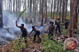 BPBD Bojonegoro Terima Kabar Bohong Kebakaran