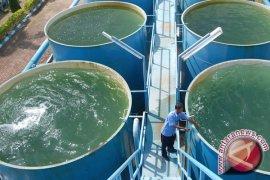 Warga Aceh Selatan kesulitan air bersih