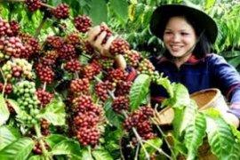 Indonesia dorong ekspor kopi ke Eropa