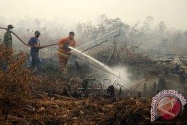 Kebakaran di California utara, 56 tewas 100 orang hilang
