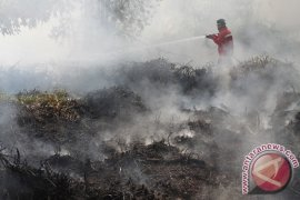 Land and Forest Fire Add Lots in Tabalong