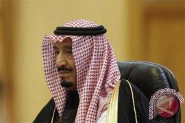 Anggota DPR: kesiapan investasi Saudi berita baik