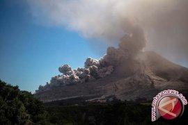BNPB : Aktivitas vulkanik Sinabung tinggi