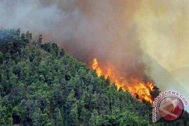 Babel Apel Siaga Pengendalian Kebakaran Hutan