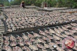Pengolah ikan di Aceh gunakan garam impor