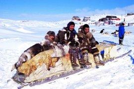 Mutasi Gen Jelaskan Adaptasi Inuit  pada Diet Berlemak Tinggi