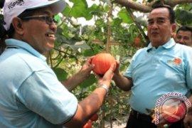 BBI Hortikultura Jadi Kawasan Agrowisata