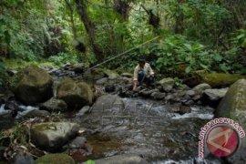 Sungai Cipelang Menyusut