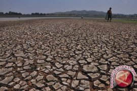 Cara mengatasi dampak El Nino