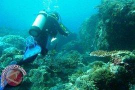 Penyelam bersihkan sampah plastik di laut Buleleng