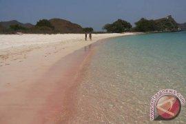 """Pink Beach"" Jadi Primadona Baru Wisatawan Mancanegara"