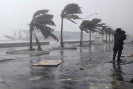 Belasan tewas diterjang Topan Super Mangkhut