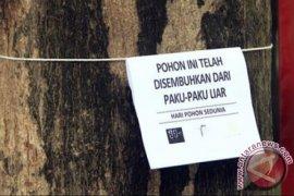 DKP Samarinda Gelar Aksi Cabut Paku