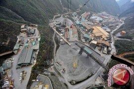 Pakar: Freeport Menjadi 'IPO' Tidak Selesaikan Masalah