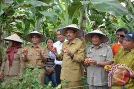 Plt Gubsu: Petani Harus Siap Hadapi Pasar Bebas
