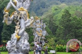 Masyarakat-wisatawan nikmati tanaman langka di Kebun Raya Bedugul (video)