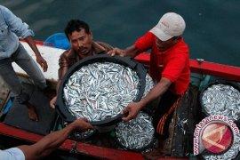 Dinkessos Akan Hentikan Bantuan Alat Tangkap Ikan
