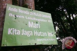 LHK sebut alih fungsi hutan akomodir usulan kabupaten/kota