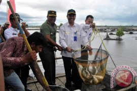 Penajam operasikan gudang pendingin ikan Babulu Laut