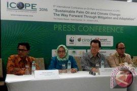 WWF Imbau Pemerintah Serius Lindungi Lahan Gambut