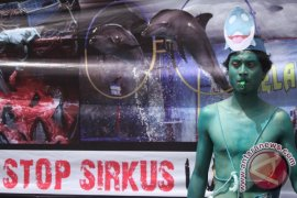 Ministry warns against use of animals in circuses, shows in Indonesia