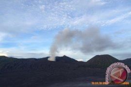 Aktivitas Gunung Bromo Masih Fluktuatif Pascaerupsi