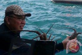 Ridwan Mukti Santap Lobster Bengkulu di San Francisco