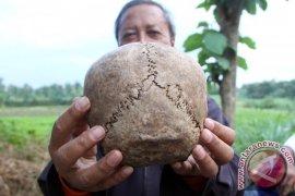 Warga Tulungagung Temukan Pecahan Tengkorak Manusia Sejarah