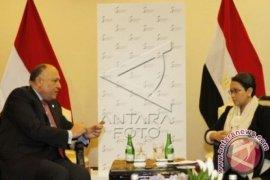 Mesir-Jordania inginkan Palestina-Israel damai