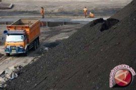 Greenpeace: 6500 meninggal akibat polusi batu bara di Indonesia
