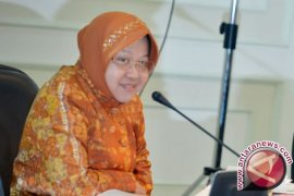 Risma Berdayakan Sopir Angkot Untuk Trans Surabaya