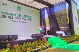 Djarum Foundation Lingkari Pulau Madura dengan Trembesi