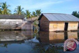 Puluhan rumah dan ratusan hektare sawah di Mukomuko terendam banjir