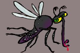 Nyamuk Modifikasi Gen Terlalu dini Untuk Dilepaskan