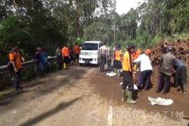 Jalur Alternatif Jatim-Jateng Tertutup Pohon Tumbang