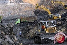 Walhi Laporkan 12 Perusahaan Batu Bara ke KPK