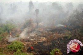 Cuaca buruk hambat pemadaman Karhutla di Pulau Enggano