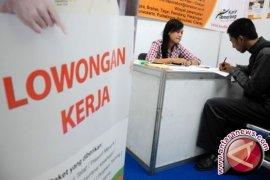 Pameran Bursa Kerja Pangkalpinang Buka 375 Lowongan