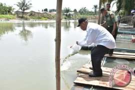 Wali Kota Tebar Benih Ikan