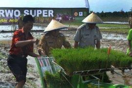 Bupati Sambas : Penerapan Teknologi Pertanian Sudah Seharusnya
