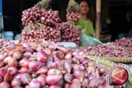 Harga bawang merah penyumbang inflasi tertinggi Balikpapan