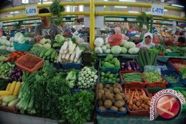Harga sayur lokal di Pangkalpinang naik