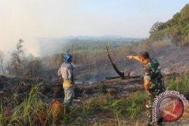 Tujuh desa di Kapuas Hulu rawan kebakaran