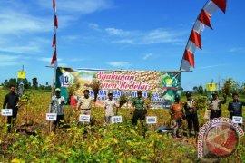 Mentan : Jaga Sektor Pertanian
