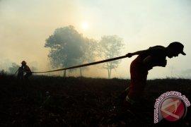 """Fire Free Alliance"" Cegah Karhutla 200 Desa"
