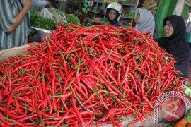 Harga cabai merah di Aceh Selatan turun