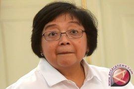 Menteri LHK permasalahkan tailing Freeport
