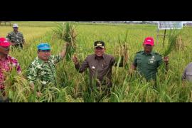 Kubu Raya Berkomitmen Jadi Kabupaten Mandiri Pangan